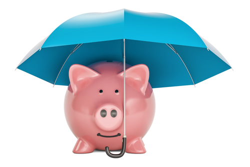 pig under umbrella shutterstock_703949590